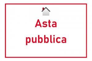 BANDO ASTA PUBBLICA - AREA ARTIGIANALE